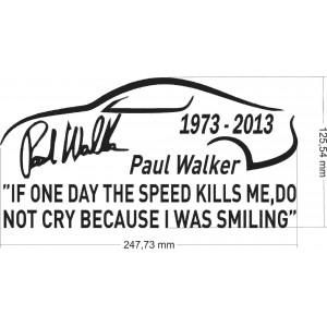Paul Walker, If one day speed kill me